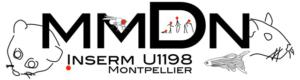 logo-mmdn