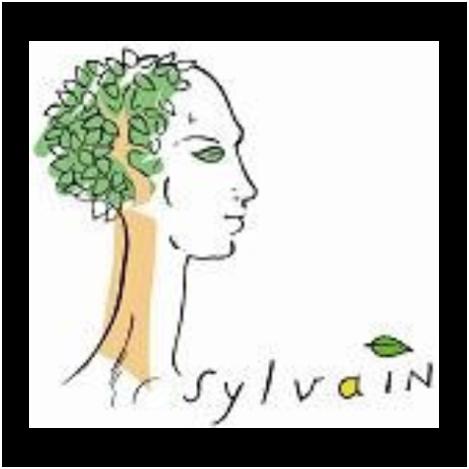 Association Sylvain (75)