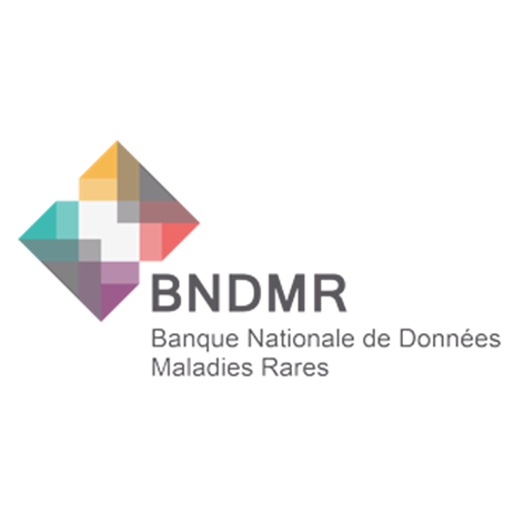 BNDMR